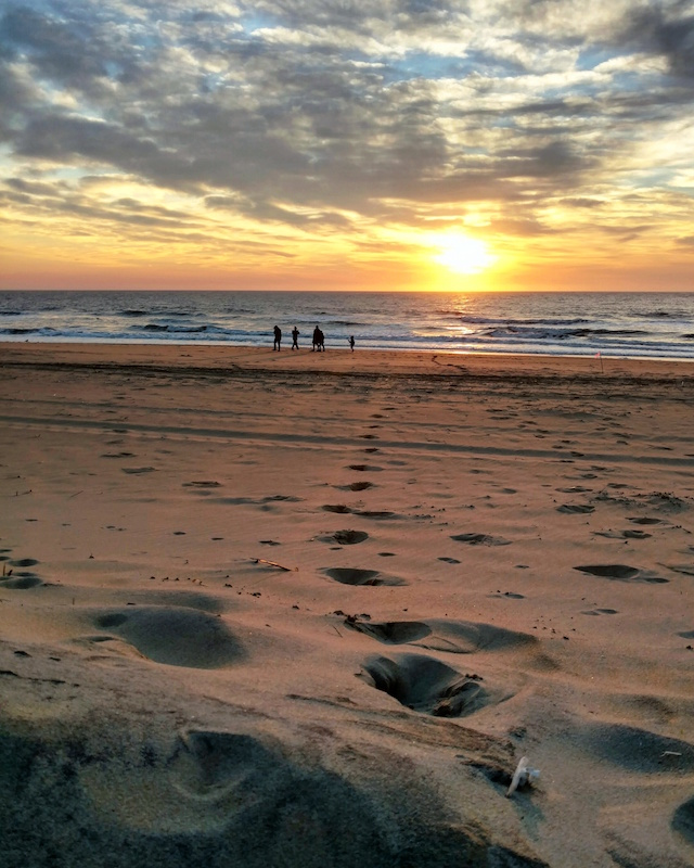 footprints in the sand beach photo