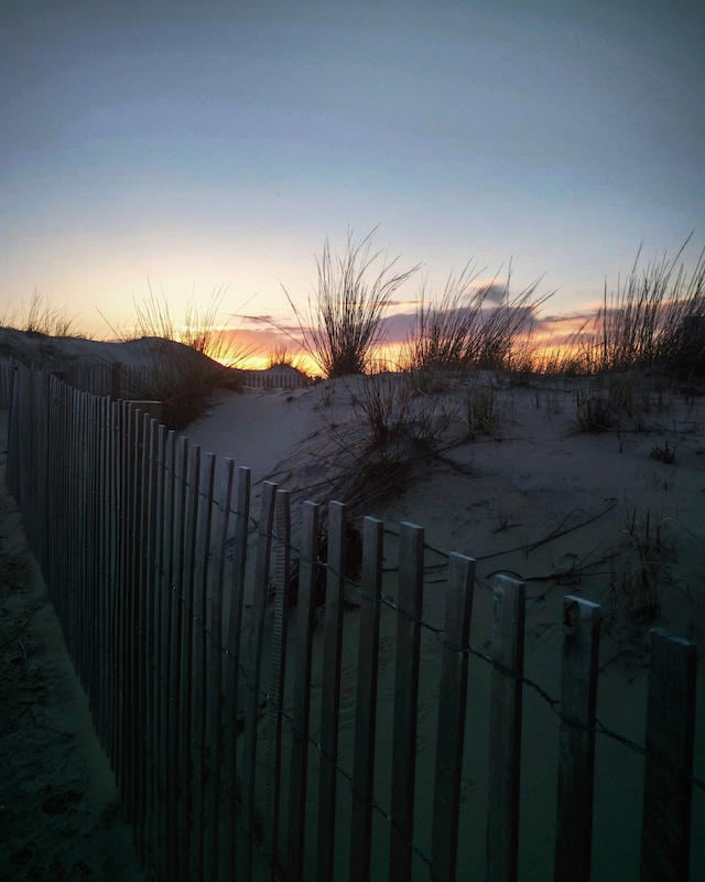 photo of dune fence and sunrise in Ocean City MD